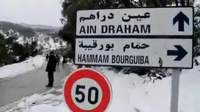 Ain Draham