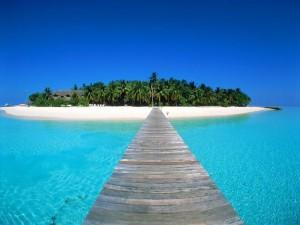 Maldives sea