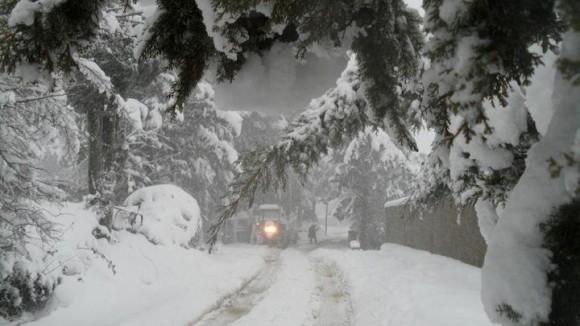 Jendouba enregistre d'importantes chutes de neige