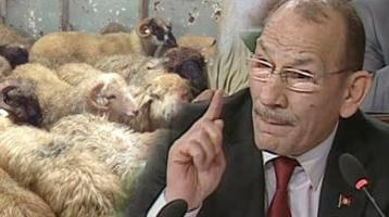 A. Maâtar explique la perte de 3 millions de dinars (en vidéo)