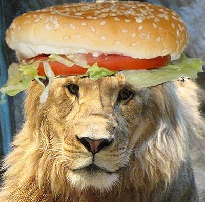 Viande de lion