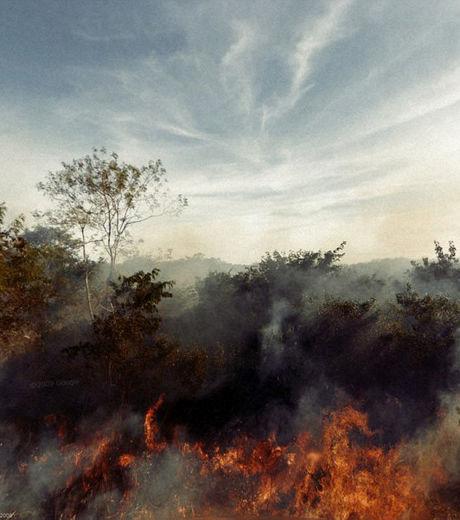 cette-image-d-incendie-capturee-par-google-street-view-semble-tout-droit-sortie-d-un-film_129631_w460