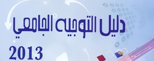Orientation universitaire 2013 par SMS