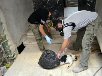 Les militants prélever des échantillons afin de vérifier pour l'utilisation d'armes chimiques, à Damas