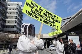 Europe: mise en garde contre les insecticides