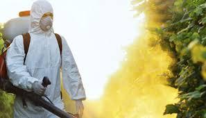 Non aux insecticides toxiques
