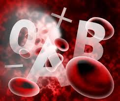 le régime alimentaire ne dépend pas du groupe sanguin