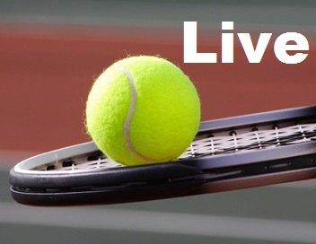 Open de Tennis WTA-Paris-Coubertin-2014-Streaming-Live