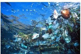 La pollution menace l'environnement sous-marin