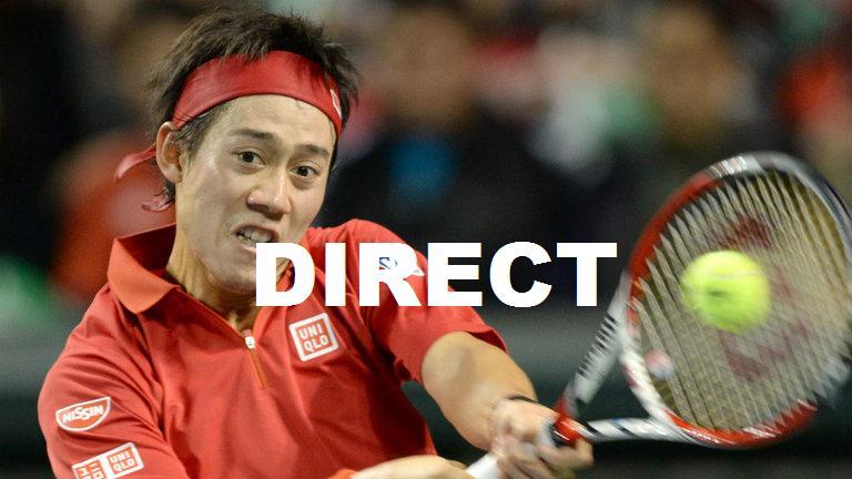 Regarder Quarts de Finale Tournoi de Paris Bercy 2014 en direct TV : Voir Tennis en vidéo streaming