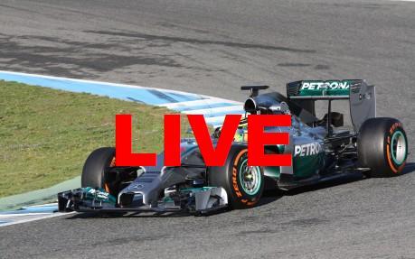 Diffusion F1 en direct TV + vidéo live : Retransmission Grand Prix Brésil 2014 et grille départ en streaming