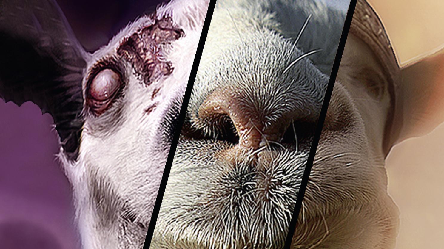 Goat Simulator The Bundle : Une expérience mitigée mais prenante sur PS4