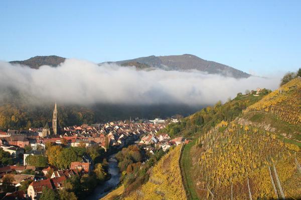 Des Racines et des Ailes Passion Patrimoine sur France 3 : Voir ou revoir le reportage entre Rhin et Moselle en Vidéo Replay