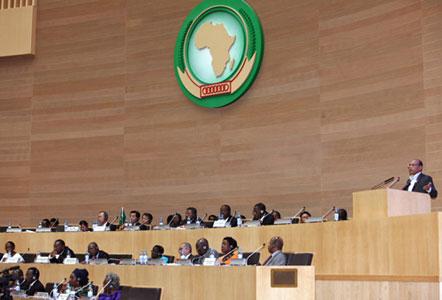Moncef Marzouki - Addis Abeba